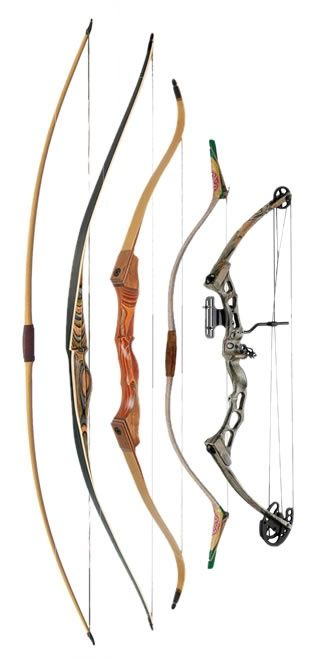 What is the Difference Between Compound Bows, Longbows and